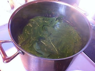 Craving Fresh: How to cook spinach and silverbeet to reduce oxalic acid