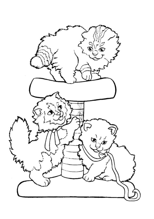 Cats Coloring Page 79 Is A From BookLet Your Children Express Their Imagination When They Color The