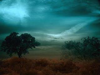 A VOZ DA SELVA AMAZÔNICA: A  CASA  MAL  ASSOMBRADA  XLVI O grande raio que saía da auréola de luz vermelha em volta de mim, estava conectado à vértebra da coluna do espírito de onde saía as vozes...