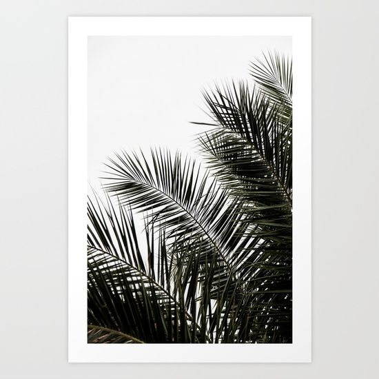 Palm Leaves 3 Art Print