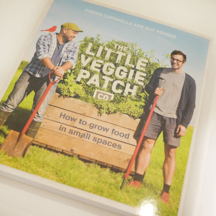 Little veg patch co - how to grow good in small spaces by Fabian Capomolla and Mat Pember  http://store.aquirkoffate.com/homewares-books