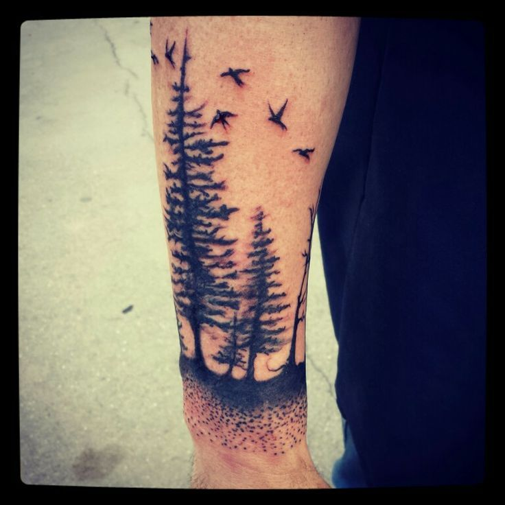 Evergreen Tree Tattoo Forearm I'm now pretty obsessed with ...