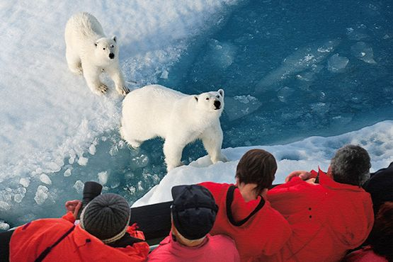 Arctic Adventures, Expeditions, Cruises | Poseidon Expeditions