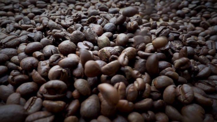 Roast beans kopiJawa 1000fps
