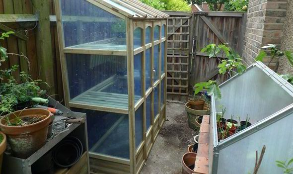 side of Forest Wall Greenhouse