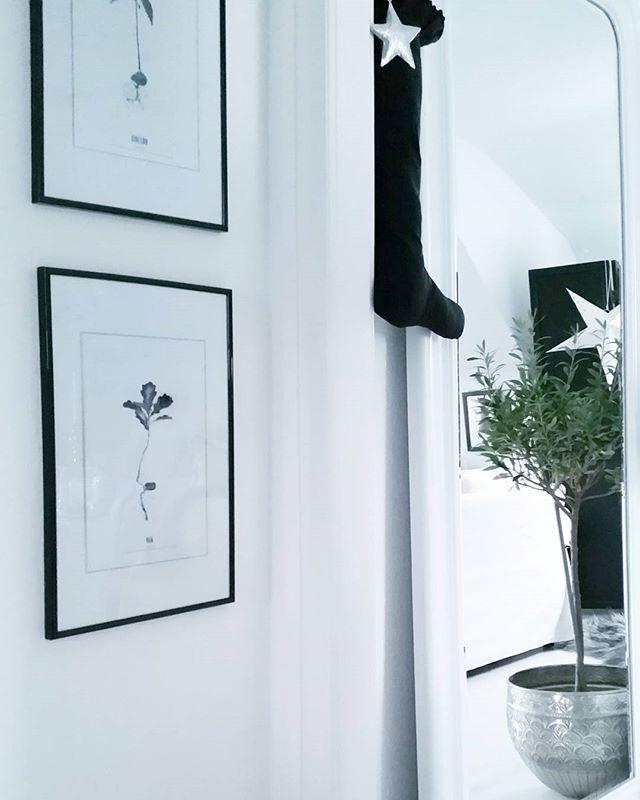1000+ Ideas About Olivenbaum On Pinterest | Impressionen ... Terrasse Gestalten Olivenbaum