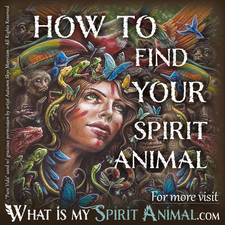 How to Find Your Spirit Animal - Artist is Autumn Skye - Pure Vida 1200x1200