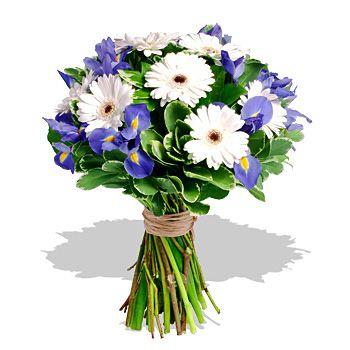 Blue iris and white gerbera handtied bouquet
