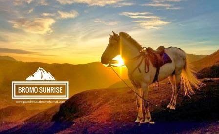 Paket wisata bromo sunrise tanpa menginap adalah paket perjalanan ke bromo dengan tanpa memesan hotel, penginapan, atau homestay. Simak infonya disini