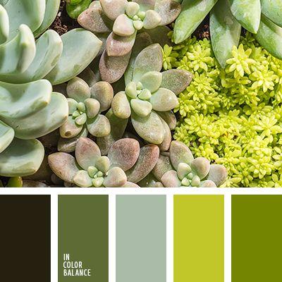 монохромная зеленая цветовая палитра, монохромная цветовая палитра, насыщенный зеленый, оттенки зеленого, подбор цвета, салатовый, салатовый и зеленый, серый, тёмно-зелёный, цвет авокадо, цвет молодой ели, яркие цвета, яркий зеленый.