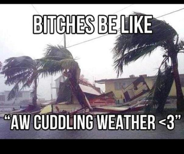 Cuddle Weather Quotes. QuotesGram
