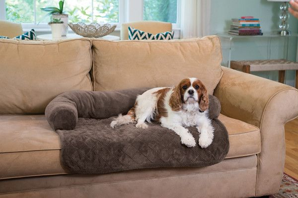 Give your pet the comfort they deserve and at the same time keep your furniture clean. * Coral Fleece * 100% Polyester * 3 Colors: Chocolate, Taupe, or Grey * M