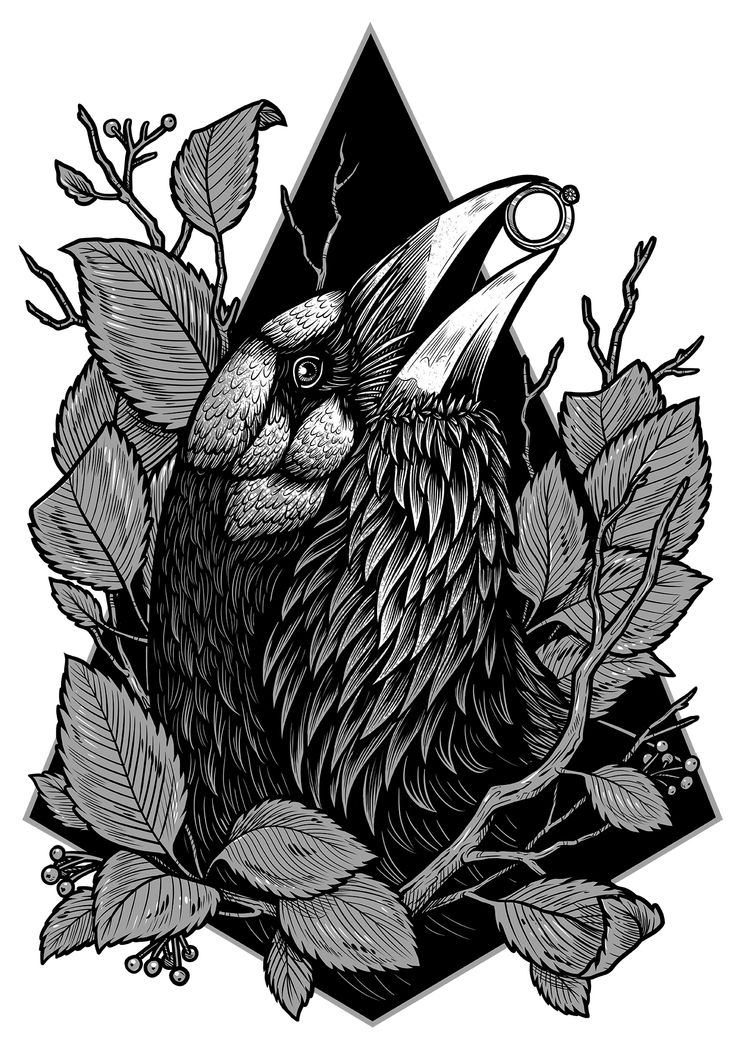 Crow designed by W.Kolinska. Awailable on t-shirts, mugs, phone cases and prints at Design By Humans.