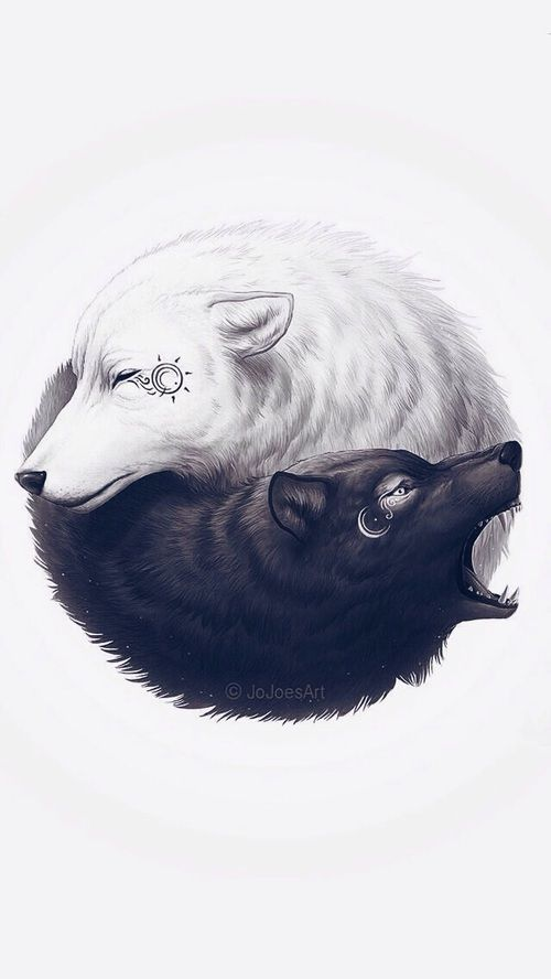 Imagen de wolf, art, and black