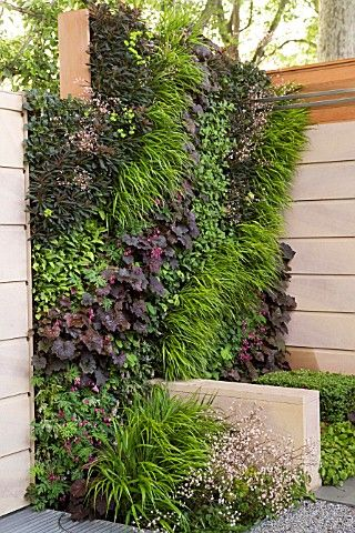 Love the textures and colors of this vertical garden.