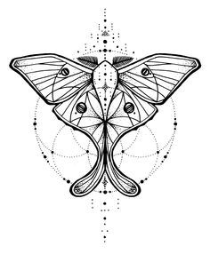 sacred geometry moth tattoo - Google Search