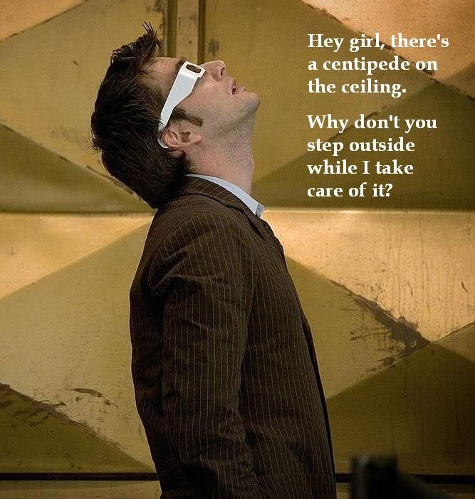 Hey Girl meme featuring David Tennat, yes, please. Plus anything with more than 8 legs makes me squeamish.