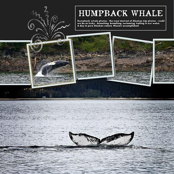 Alaska #DisneyCruise Whale Watching #Scrapbook Page Layout by Sharon