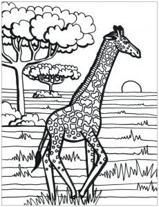 giraffes  free printable coloring pages for kids in 2020