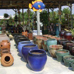 Large Vases For Plants