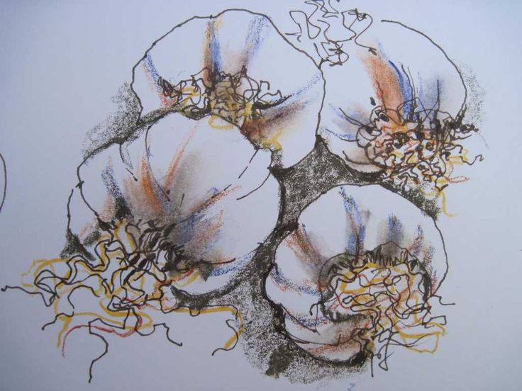 Garlic drawing - Multimedia Art by Marion Browning B.A. hons.