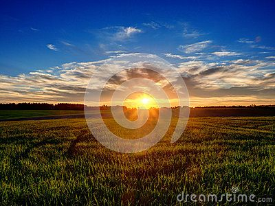 Sunset over field in country in Poland
