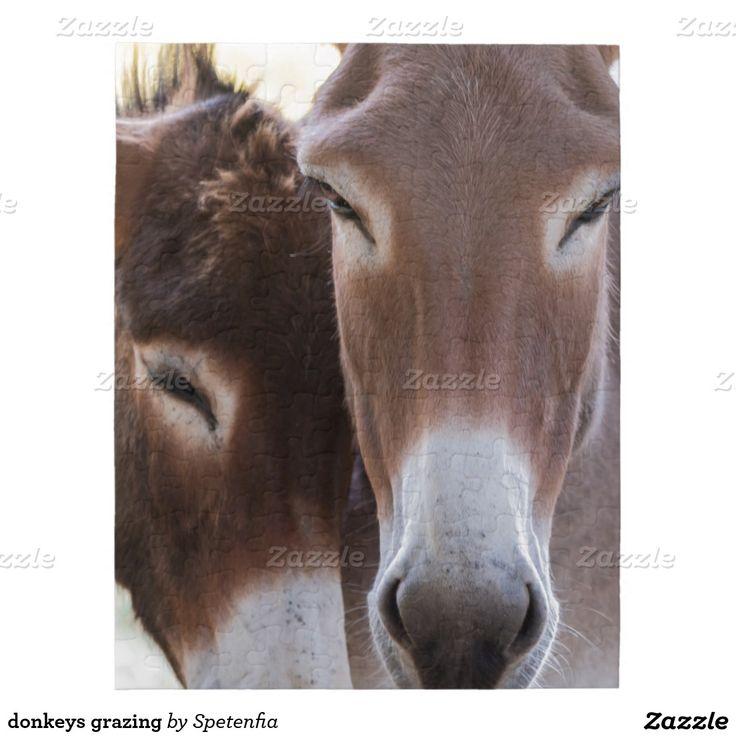donkeys grazing puzzle