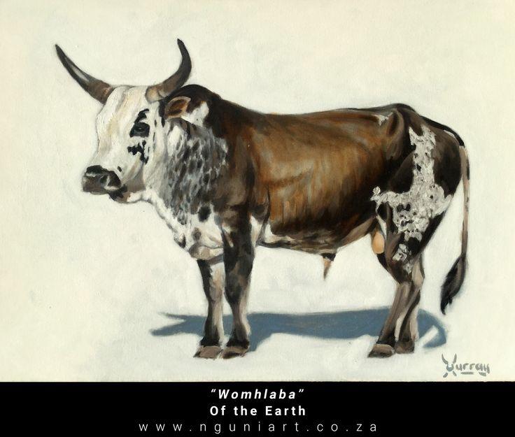 """Womhlaba""  Of the Earth (Zulu translation) Nguni Bull Oil Painting ***New July 2017*** Medium: Oil on canvas Size: A2 42cm x 59.4cm"