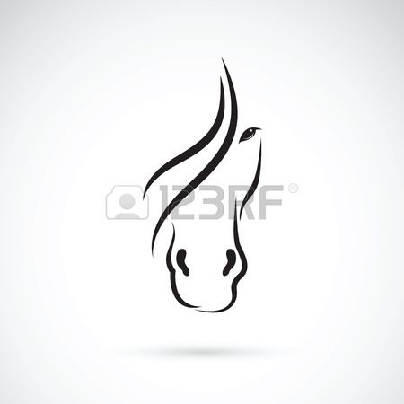 Vector image of an horse face design on white background