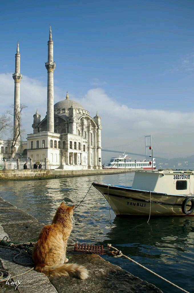 Relaxing on the waterfront at Istanbul
