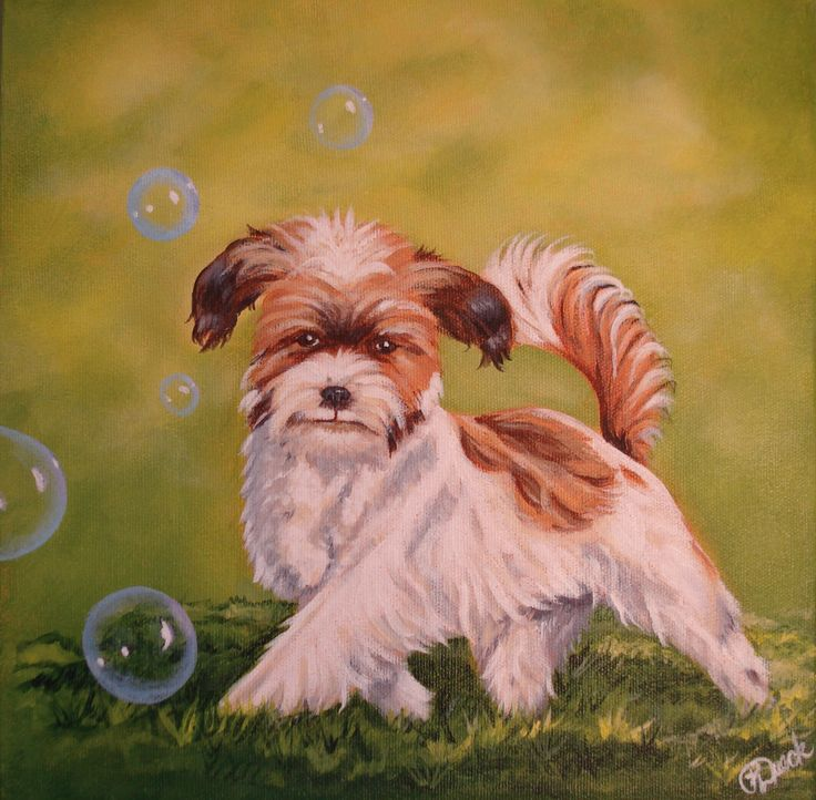 """Molly"" 10"" x 10"" commissioned acrylic by Pauline Dueck. #dogportraits www.facebook.com/paulinedueckartist"