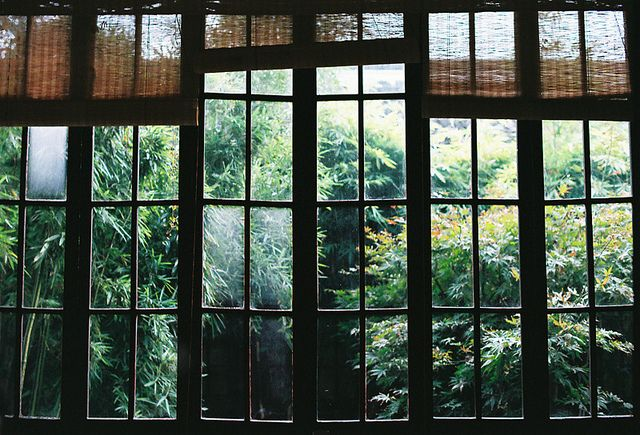 window panes.