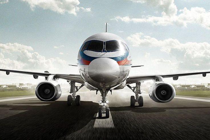Airport Bird Control Methods to Prevent Bird Strikes