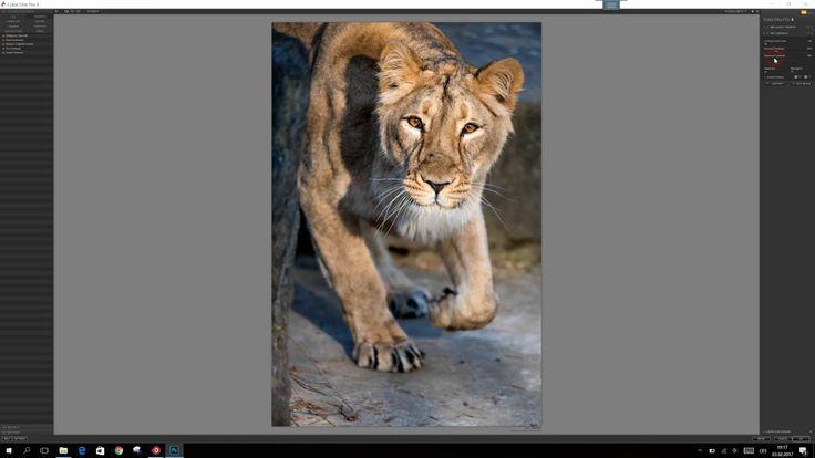 Patrik Staněk - fotograf - úprava fotografií ve Photoshopu CC