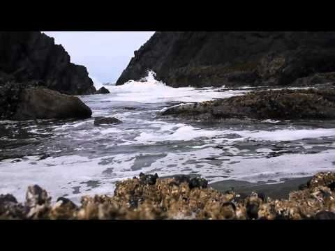 Ebb and Flow: The Rhythm of Craniosacral - YouTube