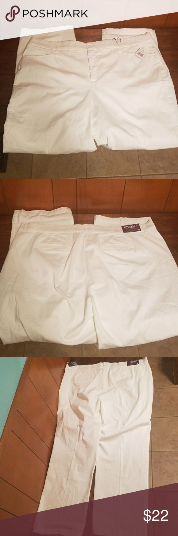 NWT Ladies plus size slacks NWT Ladies plus size white slacks. Excellent condition no rips stains or tears. Size 22 waist and inseam is 31inches. There is some stretch. All reasonable offers will be considered. Gloria Vanderbilt Pants Trousers