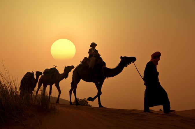 Excursion à dos de chameau au coucher du soleil dans la palmeraie de Marrakech