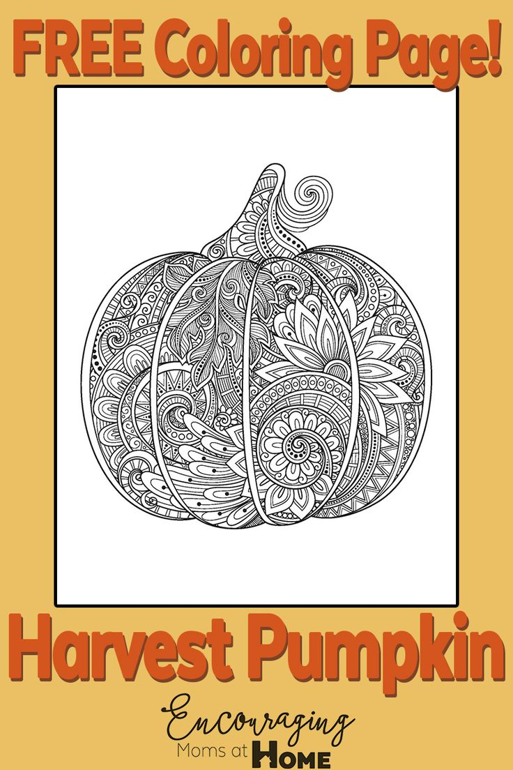 17 Best ideas about Pumpkin Coloring Pages on Pinterest
