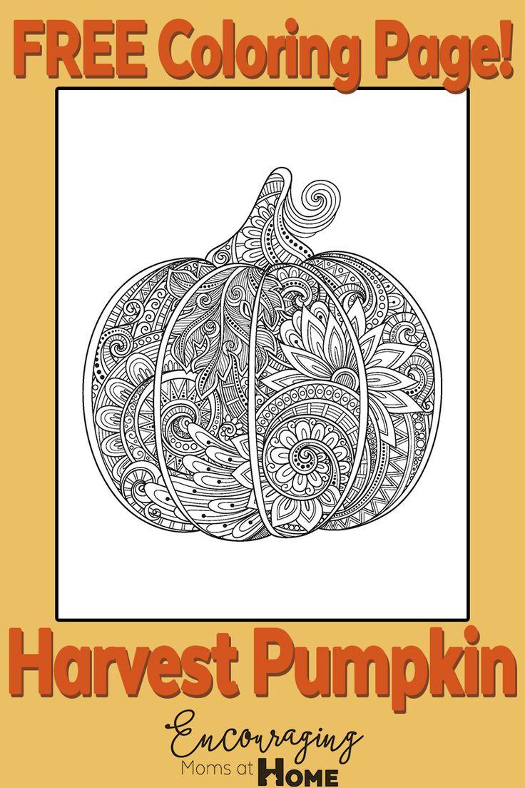 17 Best ideas about Pumpkin Coloring