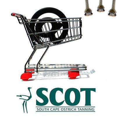 SCOT's new online #ordering system makes it easy to work with SCOT. You can now place orders 24/7 from anywhere in the world. SCOT takes great pride in its quality ostrich skins and ensures that customers have easy access to local inventories, fast delivery times and straightforward online ordering capabilities. Read more at http://www.scot.co.za/