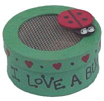 Mini bug house- perfect for those brownies working on their bug badges!!