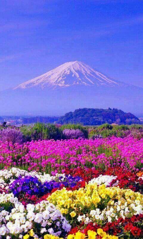 Beautiful Mount Fuji – #Beautiful #fuji #Mount