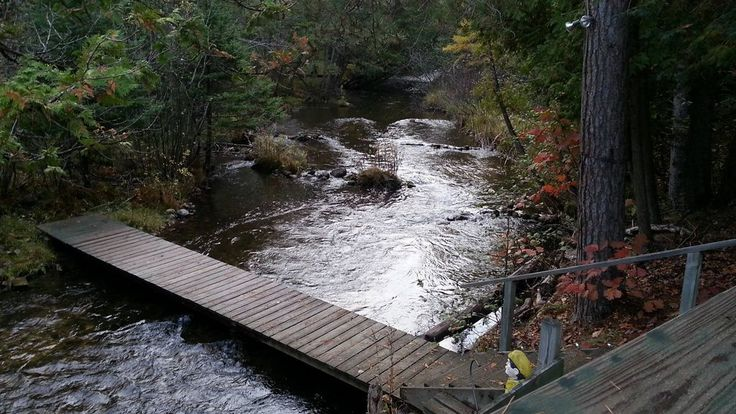 Thunder Bay Riverfront Log Cabin on 40 acres. 2 bedroom, 1 bath. Rustic, but has all the conveniences of home. Fully equipped kitchen, gas grill, microwave, toaster oven, dishwasher, washer/dryer, fireplace. ...
