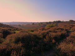 Panoramio - Photos by kuchipi Posbank, Veluwe