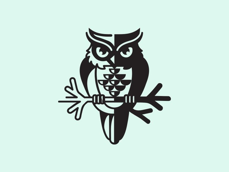 moon animal owl black night design identity illustration shadow logo mark symbol