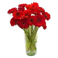 http://www.lovenwishes.com/bhopal.htm