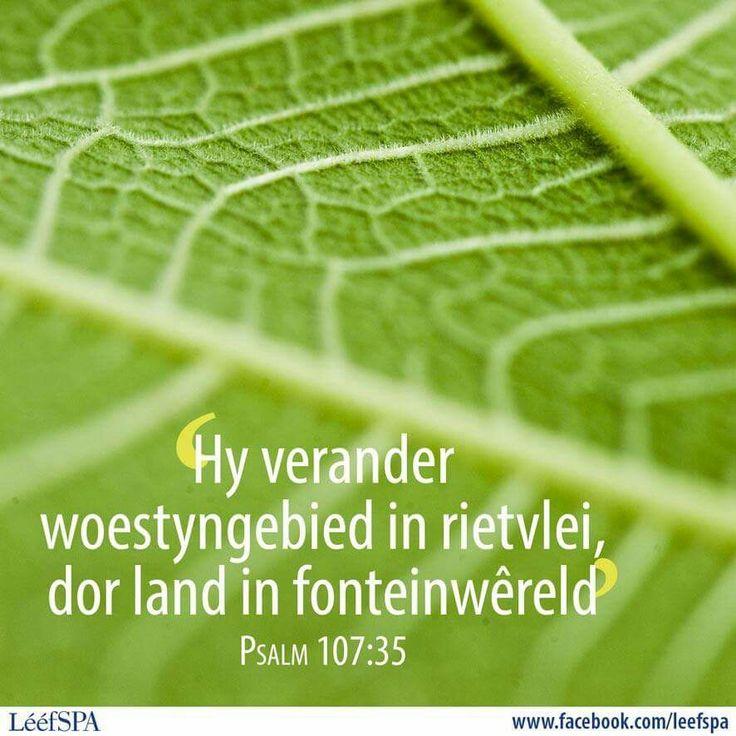 Psalm 107:35