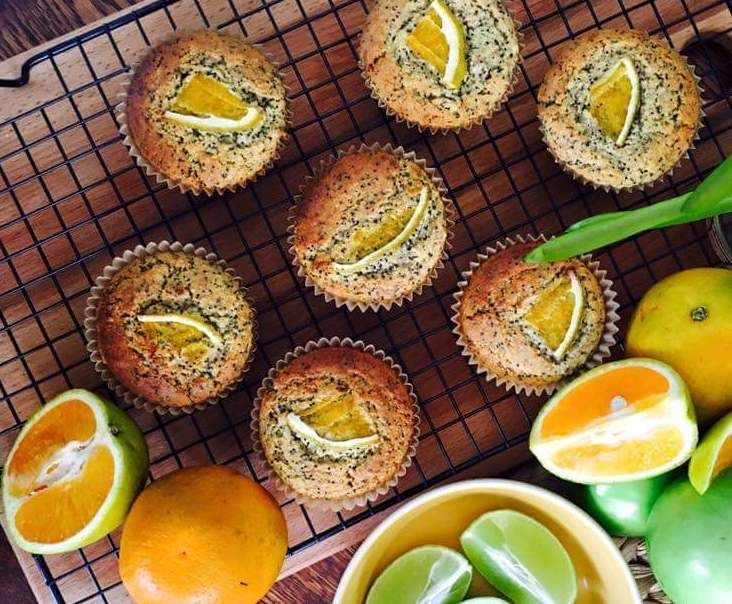 Recipe Orange and poppy seed paleo muffins by Queen Mixer - Recipe of category Baking - sweet