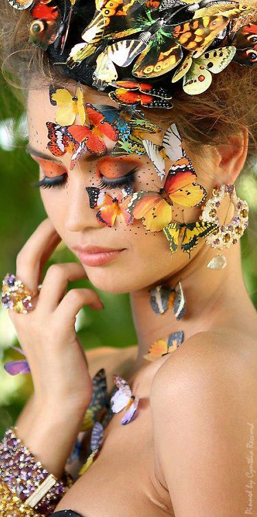 The Butterfly Effect | cynthia reccord