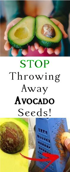 """AVOCADOS ARE RICH IN NUTRIENTS. BUT MANY PEOPLE ARE NOT AWARE THAT AVOCADO SEEDS ARE ALSO AN INTEGRAL PART OF THIS SUPER FOOD. AS THE OLD SAYING GOES, """"WASTE NOT, WANT NOT."""